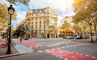 Plaga de xinxes als arbres de Barcelona