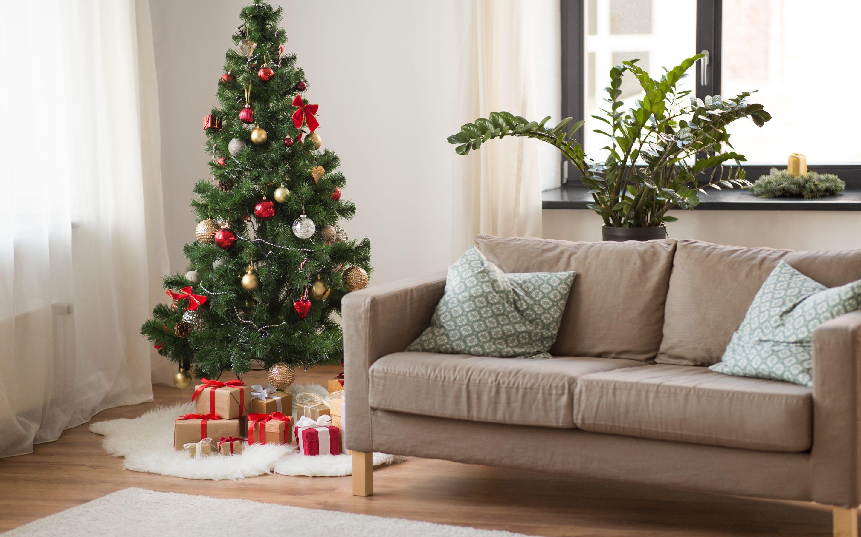 Risc d'insectes als arbres de Nadal naturals